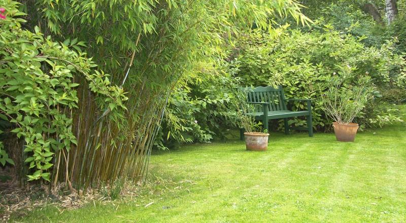 Gartenshop Gartenbedarf Versandkostenfrei Hortomundo