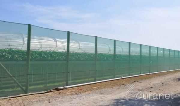 50 lfdm Windschutznetz 1,50m breit, Windschutzgewebe 50% Windreduktion