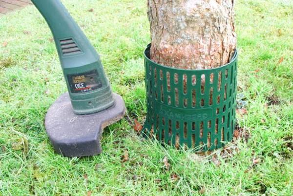 Baummanschette gegen Mähschäden