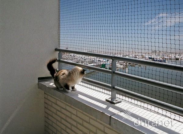Katzennetz Balkonnetz